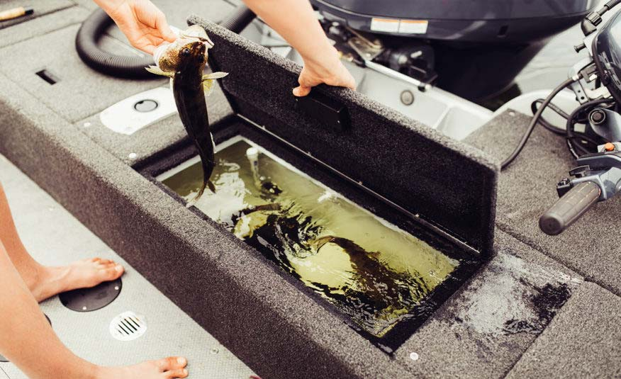 Keep your fish strong and healthy in the rear mounted re-circulating aerated livewell with timer