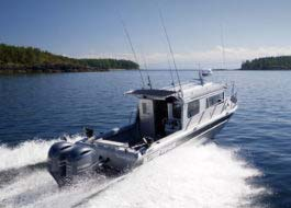 High on performance, low on fuel consumption, perfect for fishing