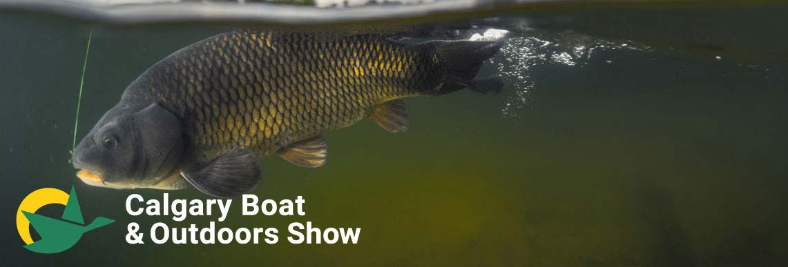 Southern Alberta S Gest Boat Outdoors Show