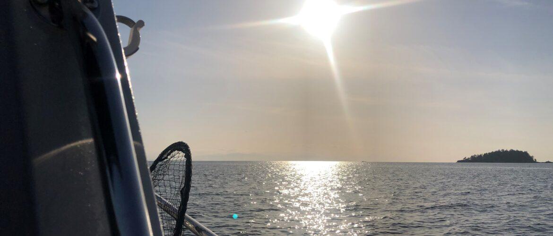 Springtime is Go Time  – Big Coast Captain's Blog